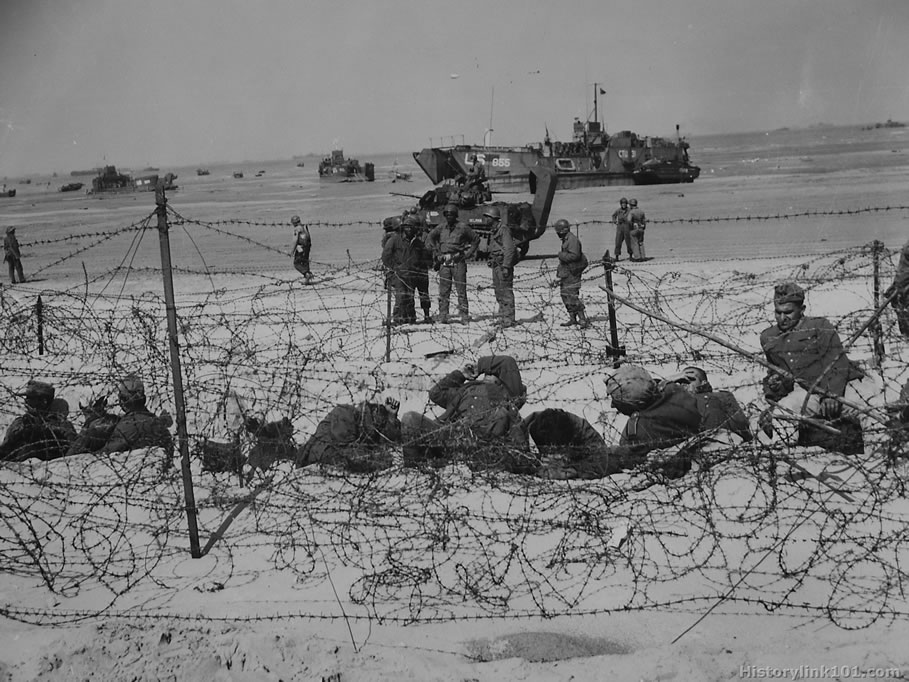 history of d day Print page » d-day tours this d-day tour is a dream trip for any wwii history buff who wants to stand on the beaches at normandy, experience the powerful emotions brought forth by the.